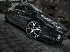 HDRR Peugeot 207 - 2 by Rayce185