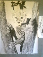 Charcoal: Cheetah Cub Stage 6 by Indiana8Jones