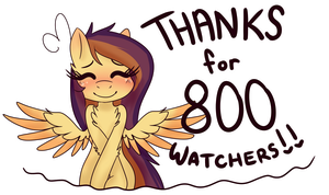 800 watchers!! by Ruef-Bae