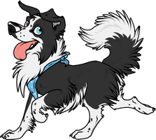 Border Collie by Spirit-Of-Alaska