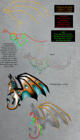 A little lesson in basic dragon anatomy by CrystalCircle