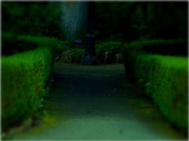 Pathways 3 by Neneplayswithpaper