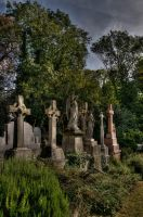 Highgate Cemetery 1 by mattrees64