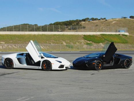 Pair of V12 AWD raging bulls Lambo Aventadors by Partywave