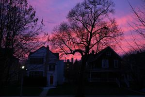 pink sky by delobbo