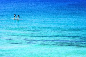 Paddle Boarders by truman1012