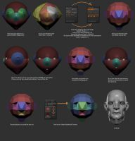 Zsphere Base Head Workflow by DuncanFraser