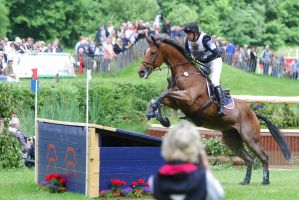 Anglo Arabian at Messmer Table Jump I by LuDa-Stock
