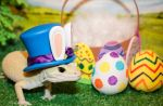 Odin - Easter 2016 - 0936 by creative1978