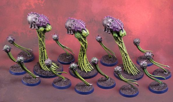 HFM - Spore Field Formation by Girot