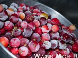 Frozen Cherries by wla91
