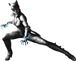 Catwoman, Batman Arkham City Render Large by micro5797