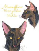 Morningflower Faces by MudstarMord-Sith