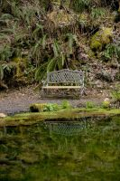 Reflecting Pond Stock by Moonchilde-Stock