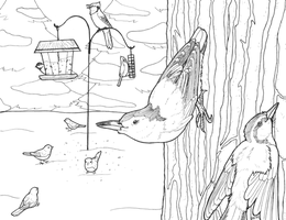 CB R+WB Nuthatches and Friends by terceleto