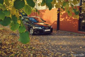 Autumn with Audi by 2micc