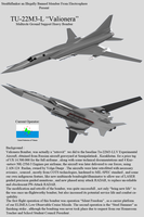 Tu-22M3L Profile by Stealthflanker