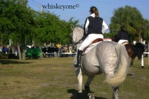 budweiser invitationals 1 by whiskeyone