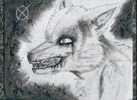 Noir the Wolf: Forever Night by DarkGothicRussia555