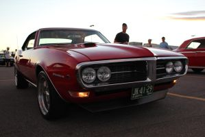 Firebird's Alive by KyleAndTheClassics