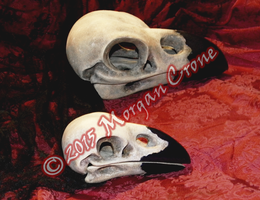 Larger than Life Crow Skulls by MorganCrone