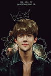 Prince Oh Sehun by ohsh