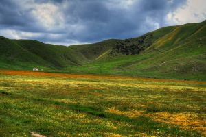 How Green is my Vally by ernieleo