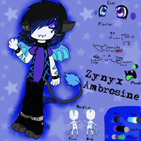 Zynyx Reference Sheet (2013 Edition) by DragonA7X