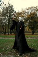 Lord Voldemort by Dijjou