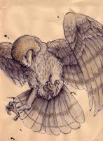Art Jam barn owl by Anarchpeace