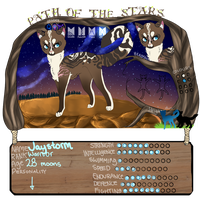 PotS || Jaystorm | Warrior | Charclan | 28 moons | by zepIyn