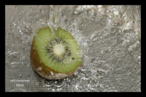 Kiwi in the water by self-contained