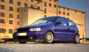 VW Polo 6n - Part9 by Cobra1986