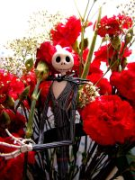 Jack Skellington w Carnations by DarkMuse112