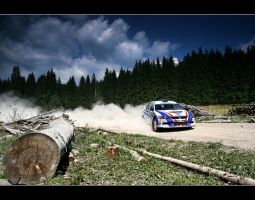 evo IX manu rally by gtimages