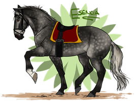 Squires Princess by sealle