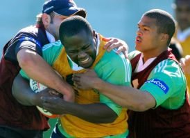 Western Province Rugby by StephensPhotos