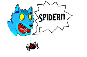 SPIDER by Sooty123