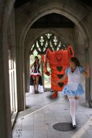 Alice Running from the Queen by Shawn-Saylor