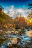 The Splendid River HDR by mjohanson