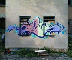 DST 16 by Wator
