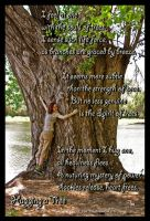 Hugging a Tree by TeaPhotography