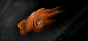 Vampire squid by diabolic-sun