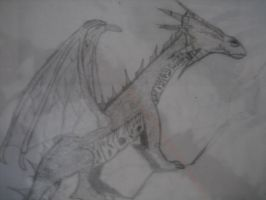 Dragon by guardianleyevermore