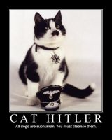 Cat Hitler by AngryFlashlight