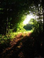 The light at the end of the tunnel by Kleineputchen