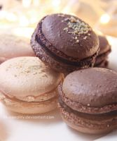 love macarons by illusionality