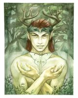 Oberon, The Sylvan King by Luthie13