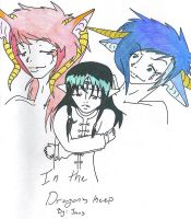 In the Dragons Keep Cover by Caryin