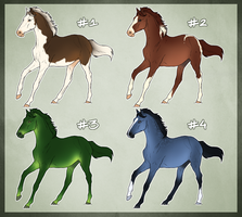 Horse Adoptable: Yearling Batch by Cat-Orb-Shop